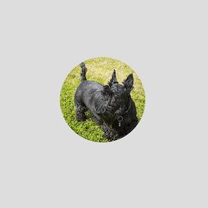 Scottie Dog Mini Button
