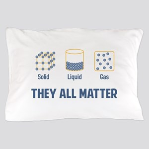 Liquid Solid Gas - They All Matter Pillow Case