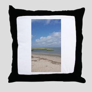 Asateague Island landscape Throw Pillow