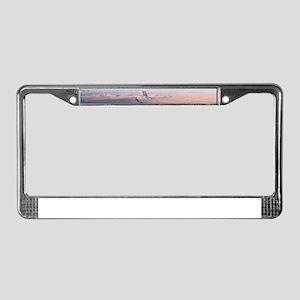Glen Canyon, Arizona/Utah Aeri License Plate Frame