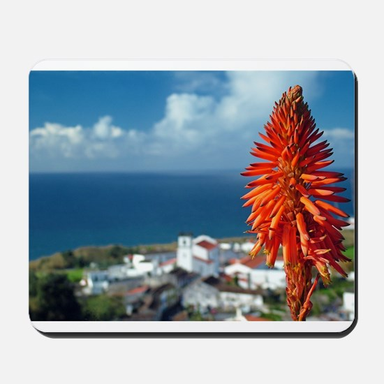 Aloe flower Mousepad