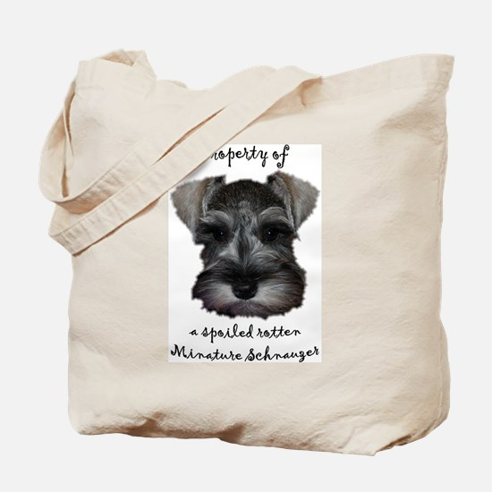 Property of Mini Tote Bag