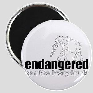 Endangered Elephant Magnets