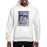 Apollo 11 Flag Hooded Sweatshirt Space gift