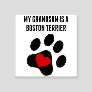 My Grandson Is A Boston Terrier Sticker