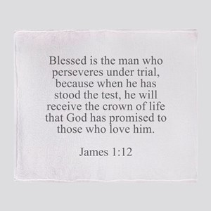 Blessed is the man who perseveres under trial beca