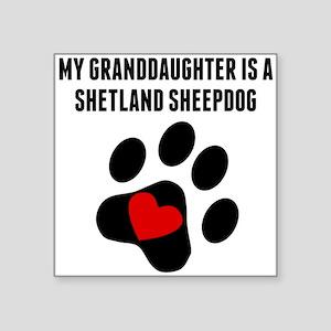 My Granddaughter Is A Shetland Sheepdog Sticker