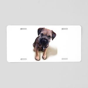 Border Terrier Boy Aluminum License Plate