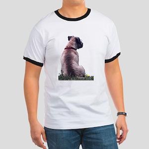 Border Terrier Watching Ringer T