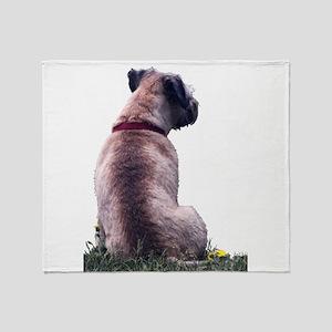 Border Terrier Watching Throw Blanket