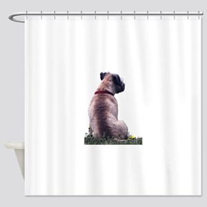Border Terrier Watching Shower Curtain