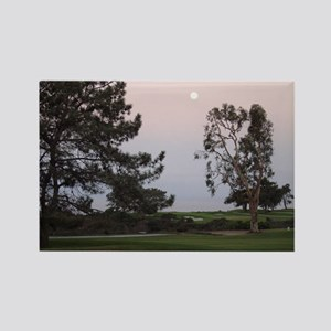 Torrey Pines Rectangle Magnet (10 pack)