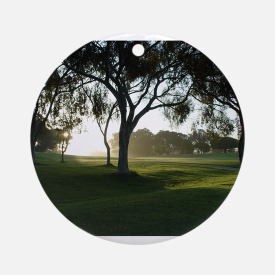 Torrey Pines Ornament (Round)