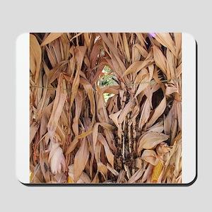 Corn Stalks in the fall Mousepad