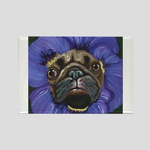 Pug Pansy Dog Art Magnets