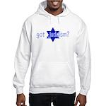 got judaism? Hooded Sweatshirt