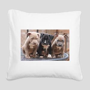 Pitbull Square Canvas Pillow