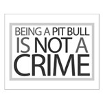 Pit Bull Not Crime Small Poster