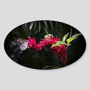 Butterfly on a flower Sticker