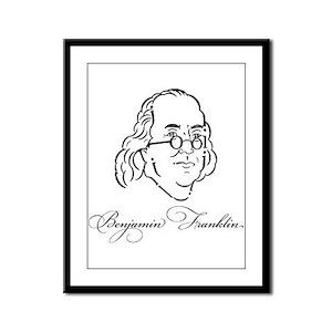 Franklin Framed Panel Print