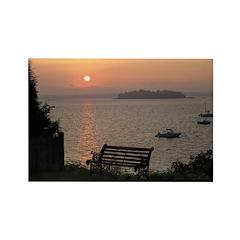 9/6 Misty Sunrise Rectangle Magnet (100 pack)