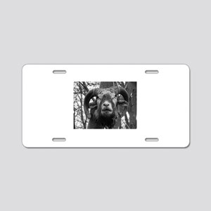 heXal GOAT Aluminum License Plate