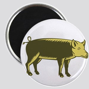 Tamworth Pig Side Woodcut Magnets