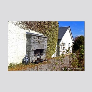 Irish House Mini Poster Print