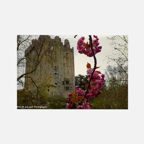 Blarney Blossom Rectangle Magnet Magnets