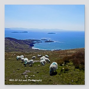 """Ring Of Kerry Sheep Square Car Magnet 3"""" X 3&"""