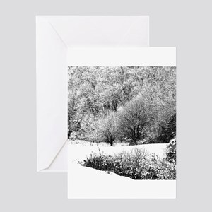 Winter country scene Greeting Cards