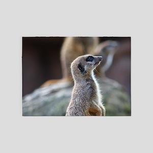Meerkat 5'x7'Area Rug