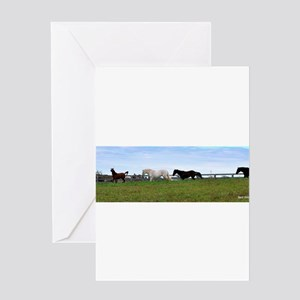 Horses, following the leader Greeting Cards
