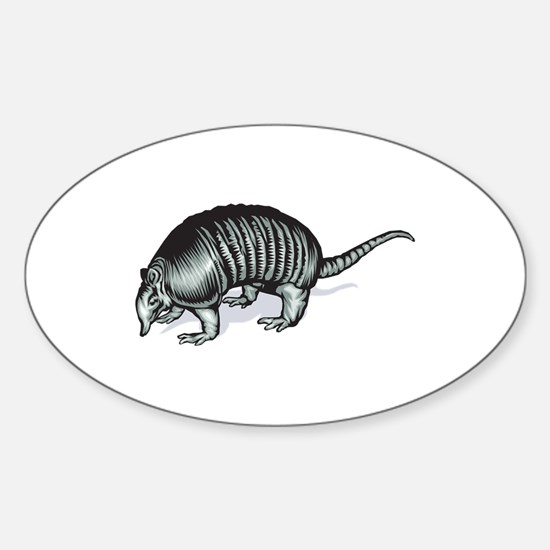 Realistic Armadillo Oval Decal