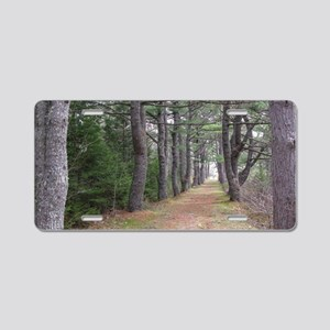 Road to War Graves Aluminum License Plate