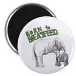 Born To Breastfeed Elephant Magnet Magnets