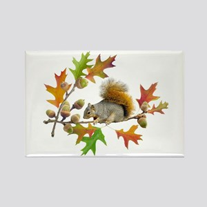 Squirrel Oak Acorns Rectangle Magnet