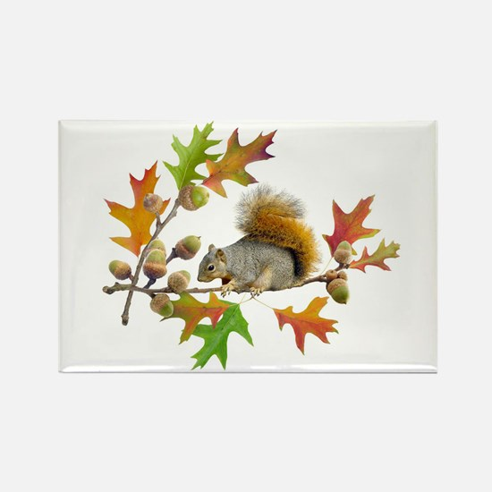 Squirrel Oak Acorns Rectangle Magnet