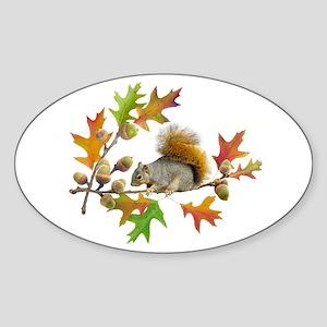 Squirrel Oak Acorns Sticker (Oval)