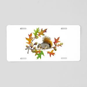 Squirrel Oak Acorns Aluminum License Plate