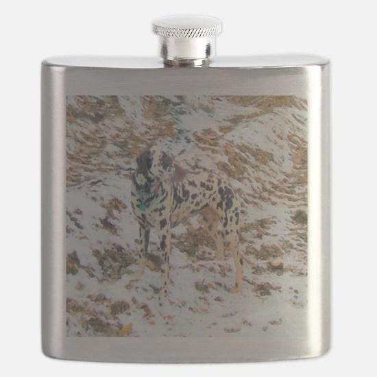 Dalmatian Terrain Flask
