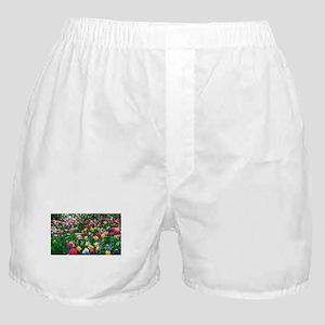 Flower Garden Boxer Shorts