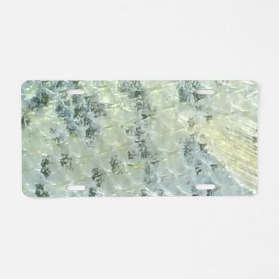 Shiny Crappie Scales. Fish Retro Tuna RCM Wild Wow
