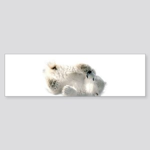 Baby Polar Bear Bumper Sticker