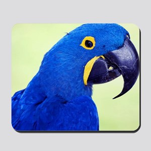 Blue Macaw Mousepad