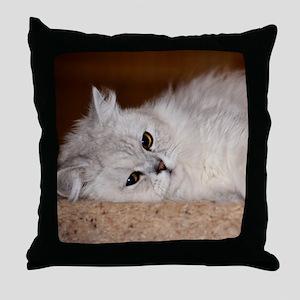 Adorable Persian Kitten Throw Pillow