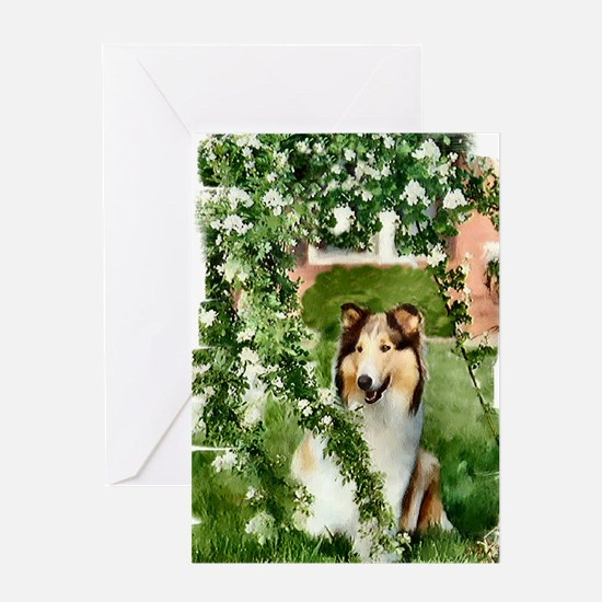 Highland Lassie Collie Gifts Greeting Card
