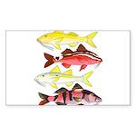 Four Indo-Pacific Goatfish Sticker