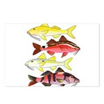 Four Indo-Pacific Goatfish Postcards (Package of 8
