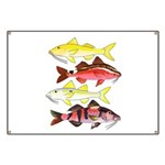 Four Indo-Pacific Goatfish Banner